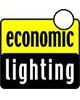 Economic Lightning